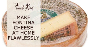 finest-kind-blog-fontina-cheese